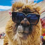 Montaña de 7 colores – Cusco 9 horas 467 km
